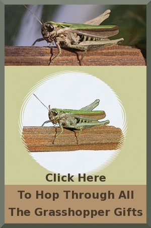 grasshopper, cricket, katydid, locust, insect, luck, lucky, fortune, birthday, christmas, gifts